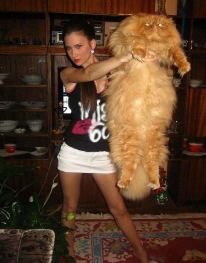 ec81e5e73318 Αξιαγάπητες γατούλες για μεγάλες αγκαλιές... Elmyra style!