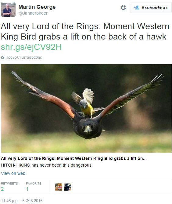 μεγάλο ισπανικό πουλί εικόνες πορνό κινούμενα σχέδια βίντεο δωρεάν