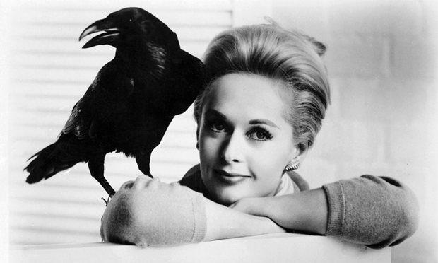 Μαύρο πουλί σεξ ταινία