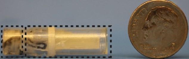 Η κάψουλα (αριστερά) που δημιούργησαν οι ερευνητές του Ινστιτούτου της Μασαχουσέτης